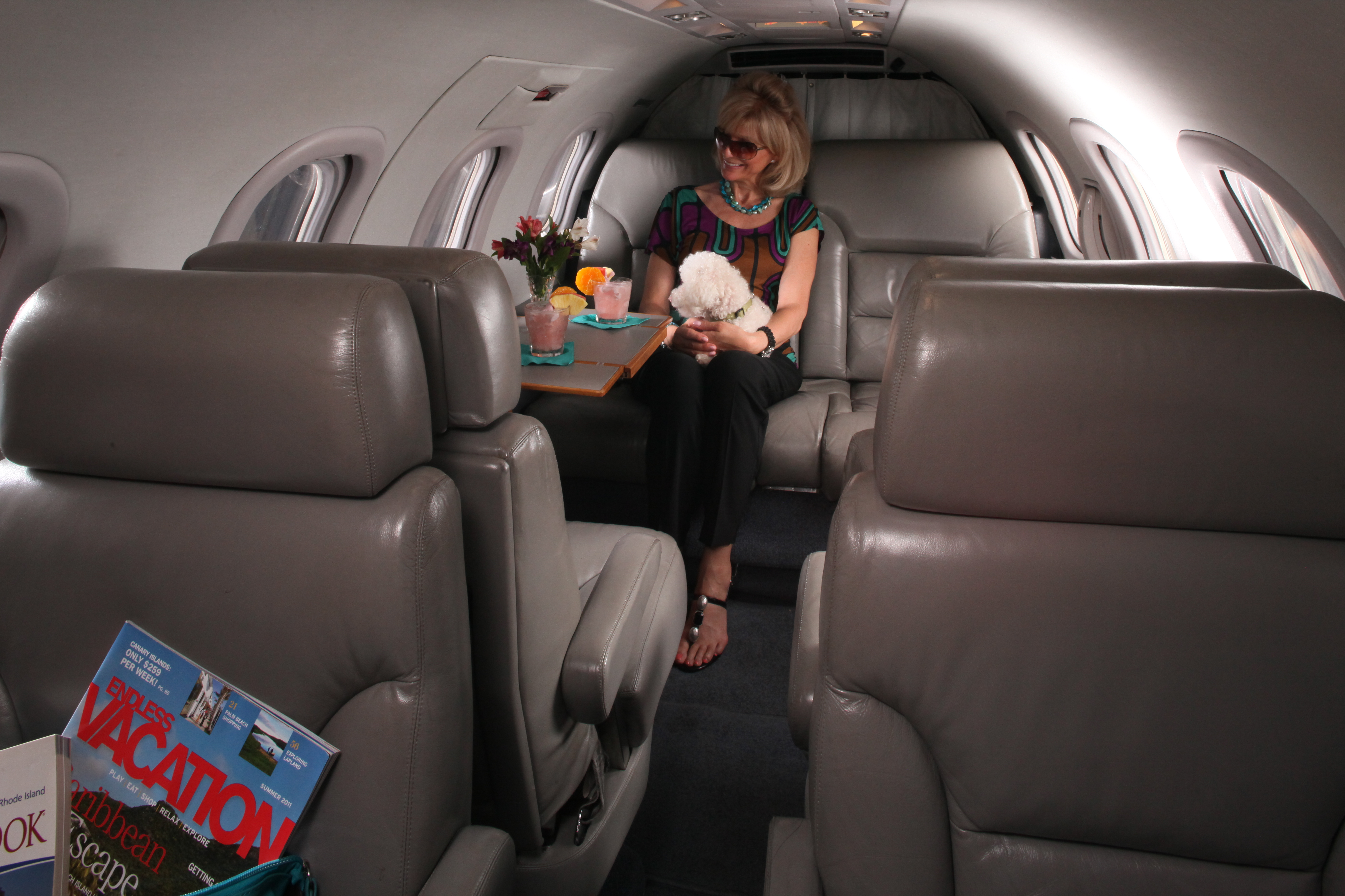 Air charter for pets, transport your pet on a private plane